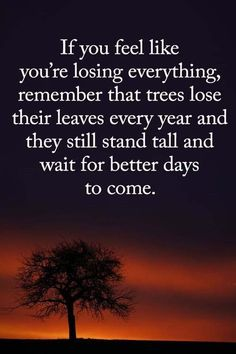 Moving On Quotes : 39 Motivational Quotes for Work Success Words of Encouragement 20 encouragement quotes Moving On Quotes : 39 Motivational Quotes for Work Success Words of Encouragement 20 Now Quotes, True Quotes, Girly Quotes, Life Is Hard Quotes, Happy Quotes, Quotes About Moving On, Inspiring Quotes About Life, Moving Quotes, Success Words