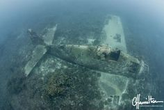 "In the last year, many photographs have surfaced of an ""Airplane Graveyard"" in the Kwajalein Atoll, Roi-Namur part of the Marshall Islands. Abandoned Ships, Abandoned Cars, Abandoned Places, Marshall Islands, Underwater Photography, World War Two, Under The Sea, Wwii, Airplanes"