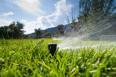Whether your goal is a greener lawn or a healthier garden (or both), an irrigation system can help you achieve it. Here's a look at the top five advantages of choosing the right irrigation method for your needs: