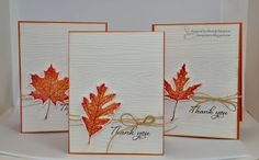 handmade thank you card set ... embossed wood grain on white ... die cut Fall leaf in bright warm colors ... some twine ... sentiment ... clean and simply pretty cards ...