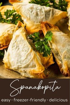 Spanakopita triangles are simpler to make than you think! So much flavor from the spinach filling that's perfect with the crispy phyllo dough. And the can be frozen so you can pop just a few in the oven anytime! These little bites are the perfect hand-held greek spinach pies, perfect for dinner or a party. #spanakopita #spanikopita #thewickednoodle #greekappetizers Salsa Tzatziki, Spanakopita Recipe, Greek Appetizers, Gourmet Recipes, Healthy Recipes, Phyllo Dough, Frozen Spinach, Moussaka, Greek Recipes
