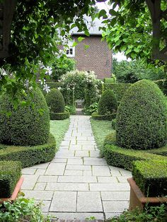 The Garden of Ineke Greve a set by SpitMcGee
