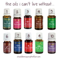 Why I Love Essential Oils   The 10 Oils I Can't Live Without