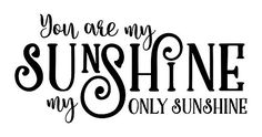 Wall Decor Plus More WDPM3746 You Are My Only Sunshine Wall Decals Love Quote 23 x 11 Black *** Learn more by visiting the image link.Note:It is affiliate link to Amazon.