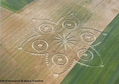 Crop circle at Cavallo Grigio, Robella, Italy - 30 June 2013 Crop Circles, Windmill Hill, Nazca Lines, Deco Nature, Alien Art, Flower Of Life, Circle Design, Land Art, Sacred Geometry