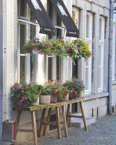 Shoppen in Maastricht. Sissy Boys, Holland Netherlands, Red Light District, Shop Interiors, Ladder Decor, Amsterdam, Blog, Home And Garden, Journey