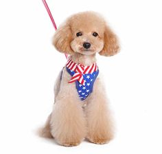 American Flag themed with stars and stripes accented with a sailor tie. The best all-in-one soft harness. Easy, safe, and comfortable to wear. It features buckle-less step-in design that is secured by a simple slide down clip. Matching lead is included with every EasyGO! Great for pictures and parties