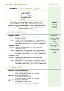 curriculum-vitae-modelo4c-verde