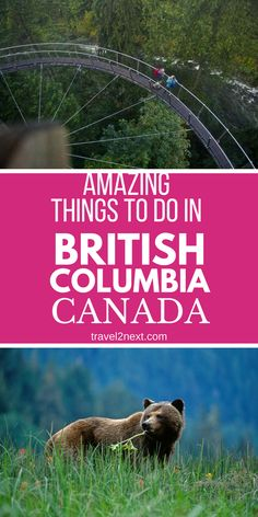 Majestic mountains, tranquil rivers, lakes and abundant wildlife are some of the things that make British Columbia in Canada an awe-inspiring place to visit. Here are 20 amazing things to do in BC for your bucket list. #thingstodo #britishcolumbia #explorebc #explorecanada #travel #vancouver #victoria #vancouverisland #travel #wildlife  #canada #canadatravel