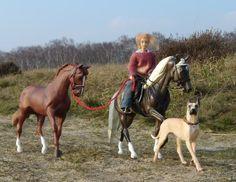 Byzanz, Stargazer's Secret by ailanreanter - model horse photgraphy