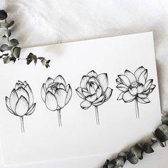 Blooming Lotus by Anett ES. Lotus Drawing, Lilies Drawing, Floral Drawing, Lotus Kunst, Lotus Art, Bloom Tattoo, Lotus Tattoo, Tattoo Ink, Arm Tattoo