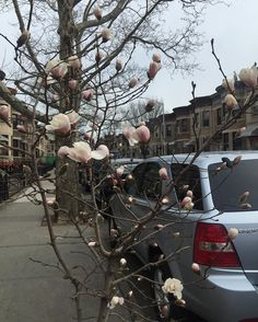Someone is very excited to show off! :) #spring #flowers #nyc #happiness