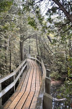 Crawford Lake Conservation Area is one of the most beautiful spots close to Toronto to get a taste of nature. The boardwalk trail around the meromictic lake is an easy walk. Check out the reconstructed First Nations village. Hiking Places, Hiking Spots, Go Hiking, Hiking Trails, Places To Travel, Places To Visit, Weekend Hiking, Quebec, Ontario Travel
