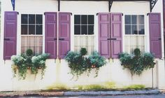 It is all about the window boxes South of Broad, Charleston, SC #charleston #windowboxes #southofbroad #architecture