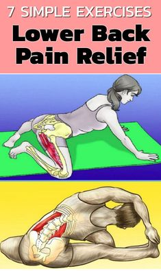 6 Stretching Exercises to Help Reduce And Relieve Lower Back Pain - Mobility, Blackroll und Faszientraining - Health Fitness Workouts, Easy Workouts, Yoga Fitness, Fitness Motivation, Health Fitness, Exercise Motivation, Fitness Facts, Fitness Pal, Fitness Quotes