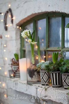 Inför julexplosionen   by blomsterverkstad   minna mercke schmidt  Sköna hem