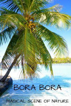 ❤️ French Polynesia, Bora Bora, the one and only.