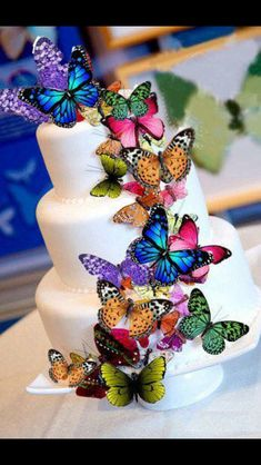 Butterfly Cake  Tier cake