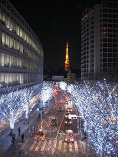 Ometesando, Japan  Christmas Week 2010