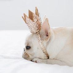 The crown is heavy darling, so just leave it where it belongs~