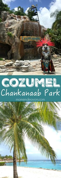 Cozumel Cruise Port Stop Idea - Visit Chankanaab Beach Adventure Park. This is a great spot for families visiting Cozumel, Mexico.