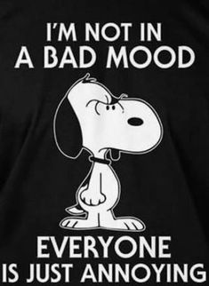 Im not in a bad mood everyone is just annoying 39 cool funny quotes Short Funny Quotes, Cute Quotes, Great Quotes, Funny Memes, Inspirational Quotes, Memes Humor, Hilarious, Peanuts Quotes, Snoopy Quotes
