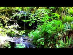 ▶ HD Relax next to a roadside waterfall up the Smith River east of Gardner Oregon. Relax Naturally - YouTube