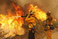 Firefighters battle the Springs Fire at Point Mugu State Park, CA. The so-called Springs Fire, which engulfed several farm buildings and recreational vehicles but so far has destroyed no homes, had consumed 8,000 acres of dry, dense chaparral and brush by late Thursday, fire officials said.