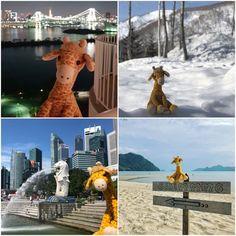 Okie Dokie - Travelling giraffe Travel Toys, His Travel, Number Of Countries, Future Travel, Trip Planning, Netherlands, Singapore, Giraffe, Bali