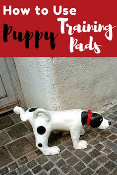 Best puppy training pads