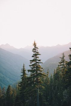 benchandcompass: peaks and tops.