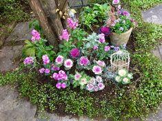 玄関前の日陰の庭の植え込み | 心地よいお庭とおうち *LE PETIT JARDIN ル プチ ジャルダン* Herb Garden, Garden Paths, Garden Planning, Container Gardening, Countryside, Backyard, Plants, Image, Outdoor Spaces