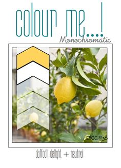 cardmaking color challenge: Colour Me...!: CMCC#36 - Colour Me... Monochromatic! ... yellow on shades of vanilla ...