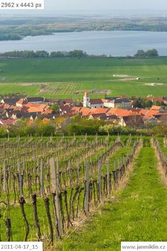 South Moravia, the wine country, Czech Republic
