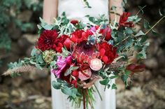 Wild red protea bouquet