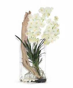 Floral Arrangement - Driftwood and white Vanda Orchids - mh2g.com