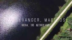 Kogelvanger Mastbos - Drone Breda, The Netherlands - DJI Phantom 3 Profe...
