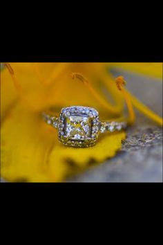 Wedding ring; engagement ring; halo; princess cut; diamond
