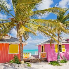 Bright vibrant colors on a pair of cottage homes from Turks and Caicos Islands with palm trees and Caribbean sunshine. Crisp, clean, and spirited.