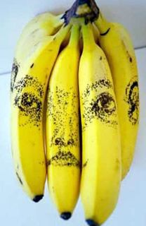 Tonico Lemos Auad--Outlines are first scored into bananas with a pin. Initially invisible, an image emerges as the fruit bruises around the lesions. Over time, the drawings gain in thickness and intensity before disappearing forever as the entire skin turns black.