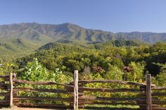 Love these green mountains ♥ The beautiful Smokies! #view #breathtaking