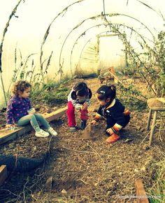 Taming the Goblin: Hidden delights at a #nature nursery - #gardening #kids