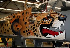 """The namesake """"Spotty"""" marked the conclusion of two decades of Cheetah service in the SAAF. South African Air Force, Delta Wing, Battle Rifle, Cheetahs, Nose Art, Space Crafts, Helicopters, Airplanes, Color Schemes"""