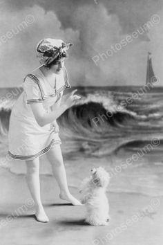 seaside dog play