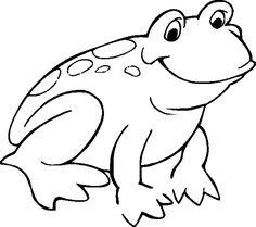 frog color sheet for kids kiddo shelter