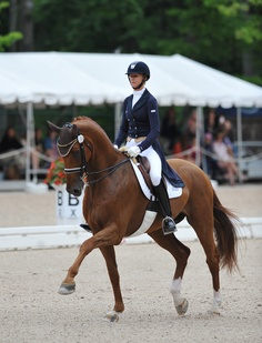 Heather Blitz and Paragon  Paragon qualified for the Olympic selection trials in his first season of Grand Prix!