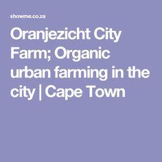 Organic urban farming in the city. A quirky concept; Coco Van, City Farm, Urban Farming, Cape Town, Organic, Photography, Photograph, Fotografie, Photoshoot