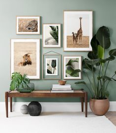 Six art prints composing an art gallery with a nature's theme styled against a green wall with planters and a bench for that organic vibe. Image via Desenio. Home Living Room, Living Room Decor, Green Living Room Ideas, Green Living Room Walls, Living Room Wall Ideas, Sage Green Bedroom, Artwork For Living Room, Beige Living Rooms, Artwork For Home