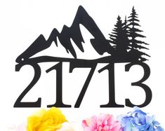 Custom Outdoor Mountain House Number Metal Sign - Black, 17x13 by Refined Inspirations