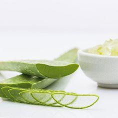 Aloe Vera Kosmetik selber machen - Rezept für eine selbst gemachte Haarmaske mit Aloe Vera für trockene Haare - stärkt das Haar, hilft gegen Spliss und spröde Spitzen ...